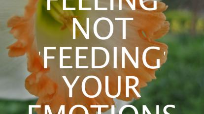 Emotional Eating: Feeling not 'Feeding' Your Emotions | Libero Magazine 2