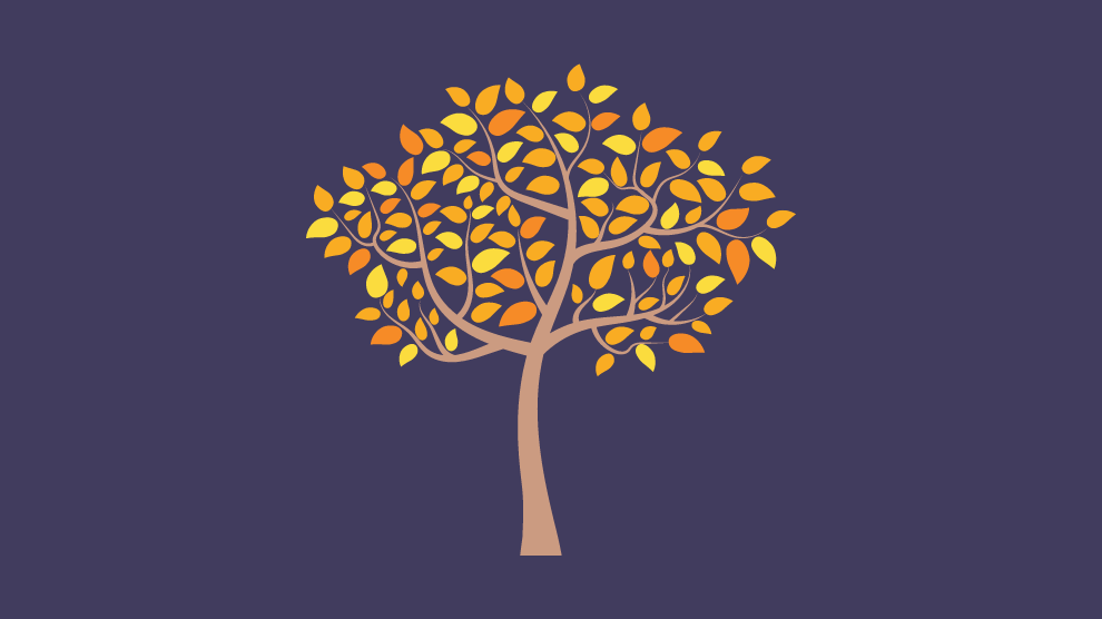 fall tree - tips for eating disorder recovery during fall